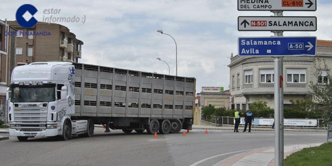 El camión averiado en la Avenida de Salamanca trasladaba cerdos