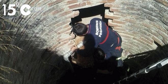 Los bomberos del parque comarcal de Peñaranda rescataron un perro que se encontraba en un pozo