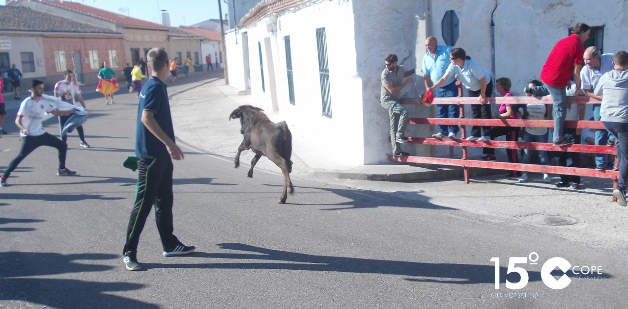 Encierro por las calles de Zorita de la Frontera
