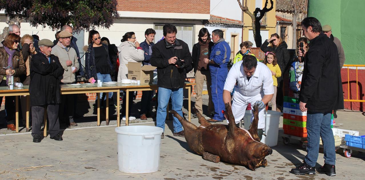 Decenas de personas participaron en la III Matanza tradicional Villa de Macotera