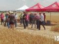 Un momento de la jornada de campo organizada por Herbiagro en Tordillos