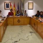 Un momento del pleno del Ayuntamiento de Peñaranda de Bracamonte.
