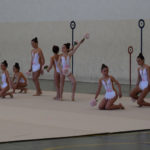 260 gimnastas de toda la provincia se dieron cita en el pabellón de Peñaranda.
