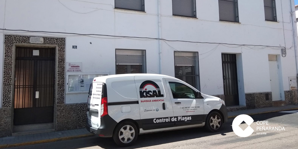 La empresa Kisal ha revisado los patios sin que haya observado garrapatas.