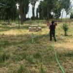 Esta semana comenzaron las labores de desbroce del parque de El Inestal.