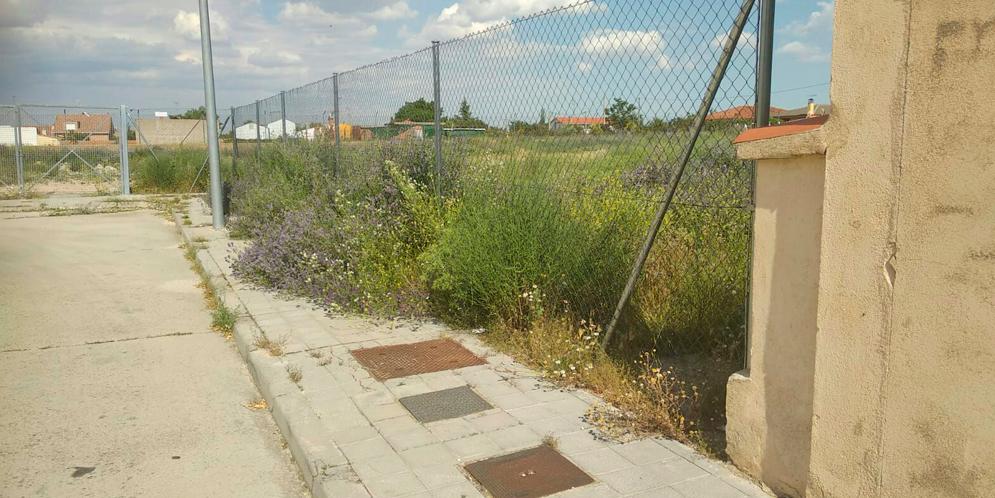 Fotografía facilitada por el Partido Popular de la situación de solares municipales.
