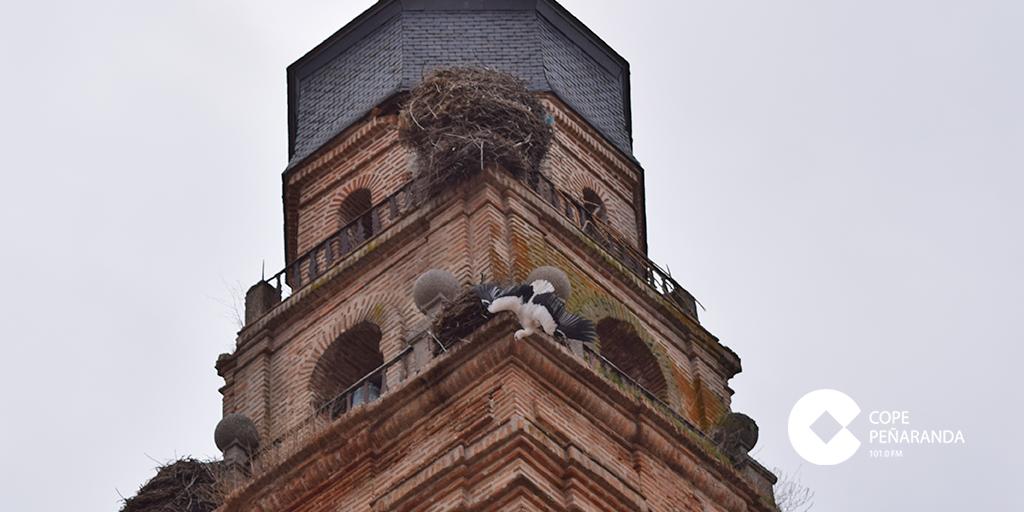 La cigüeña quedó colgada de un nido de la torre de la iglesia.