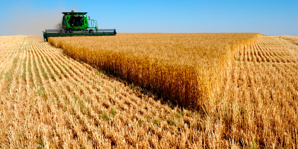 El 10 % de la superficie agraria en España es ecológica