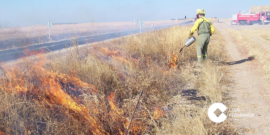 UCCL solicita autorización para la quema de rastrojos como medida fitosanitaria