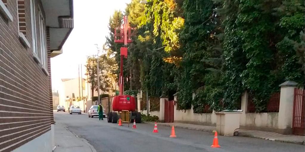 PEC critica que el Ayuntamiento pode los árboles de la calle Velázquez en una propiedad privada