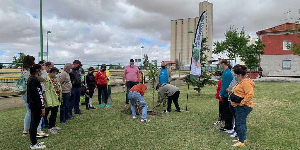 Plántate y planta un árbol llega a Peñaranda