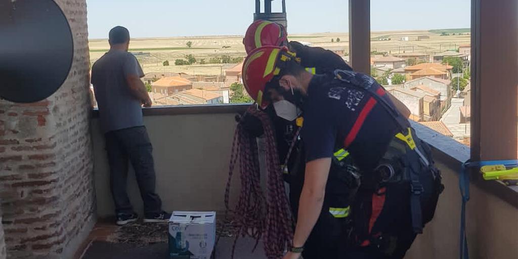 Los bomberos rescatan a una cigüeña en Cantalapiedra